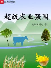 超级农业强国