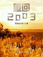 重回2003