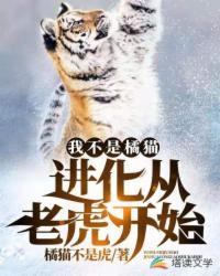 我不是橘猫!进化从老虎开始
