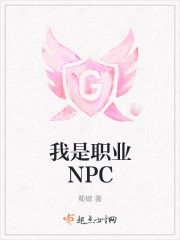 我是职业NPC